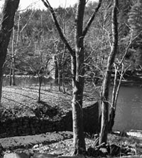 Curved stone bridge abutment from twin bridge on Route 213 side of Wallkill.